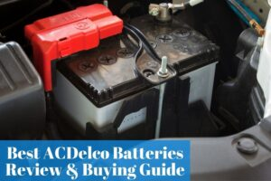 Selecting a long-lasting and popular AC Delco battery for your auto